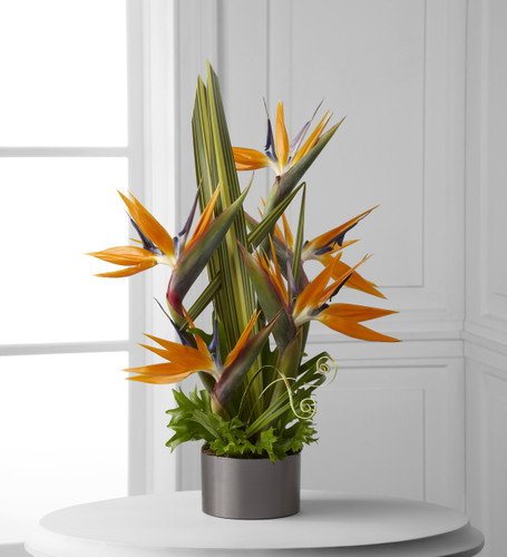 TheTropical Bright Arrangement