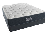 BeautyRest Silver Courtyard Blue Plush