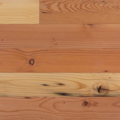 Reclaimed doug fir flooring paneling sample terramai for Terramai flooring