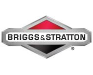 Briggs & Stratton 6360 Emergency Stop Button