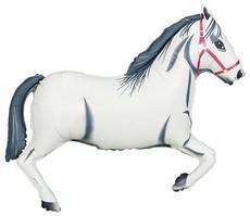"""43"""" White Stallion"""