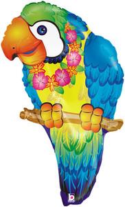 parrot balloons