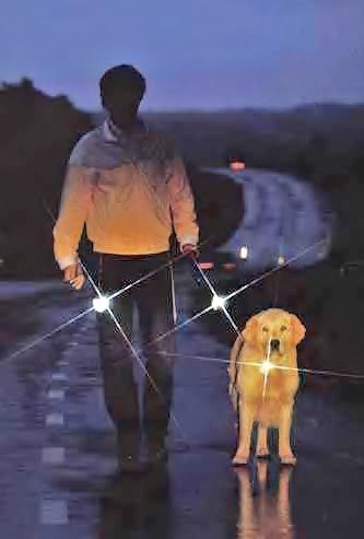 man-and-dog-sharpened.jpg