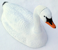 Swan Decoy for Candaian geese control in your pond
