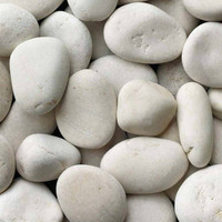 Ivory Bone Seaside Beach pebbles for landscaping water gardens and water features