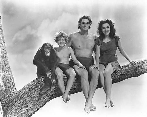 This is an image of 176319 Tarzan Photograph & Poster