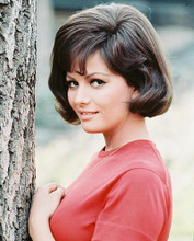 This is an image of 243296 Claudia Cardinale Photograph & Poster