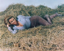This is an image of 243961 Honor Blackman Photograph & Poster