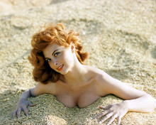 This is an image of 248641 Tina Louise Photograph & Poster