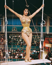 This is an image of 244506 Gina Lollobrigida Photograph & Poster