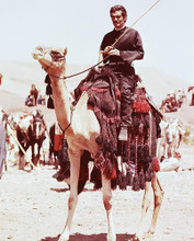 This is an image of 244597 Omar Sharif Photograph & Poster