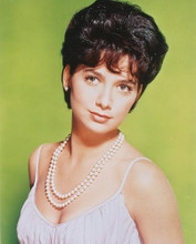 This is an image of 250375 Suzanne Pleshette Photograph & Poster