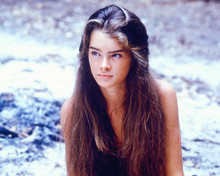 This is an image of 278256 Brooke Shields Photograph & Poster
