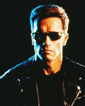 This is an image of 216649 Arnold Schwarzenegger Photograph & Poster