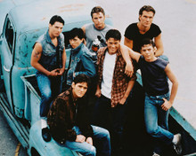 This is an image of 210853 The Outsiders Photograph & Poster