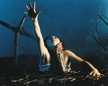 This is an image of 212450 The Evil Dead Photograph & Poster