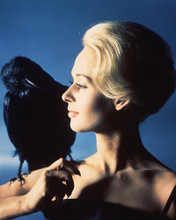 This is an image of 221114 Tippi Hedren Photograph & Poster