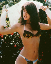 This is an image of 221546 Phoebe Cates Photograph & Poster