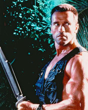This is an image of 222287 Arnold Schwarzenegger Photograph & Poster