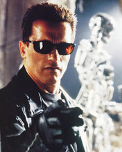 This is an image of 222742 Arnold Schwarzenegger Photograph & Poster