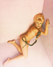 This is an image of 225902 Elke Sommer Photograph & Poster