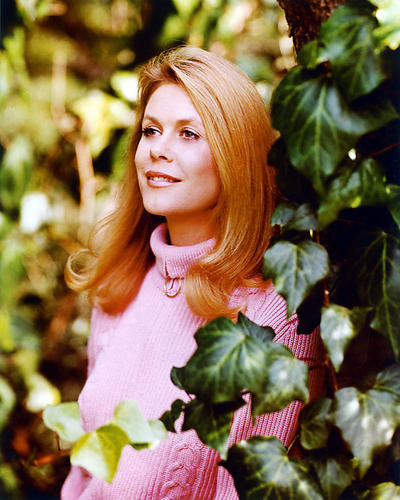 This is an image of 226273 Elizabeth Montgomery Photograph & Poster