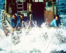 This is an image of 225339 Jaws Photograph & Poster