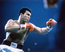 This is an image of 232280 Muhammad Ali Photograph & Poster