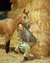 This is an image of 226789 Robert Taylor Photograph & Poster