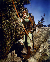 This is an image of 229936 Errol Flynn Photograph & Poster
