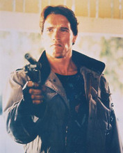 This is an image of 233339 Arnold Schwarzenegger Photograph & Poster