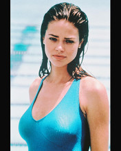 This is an image of 234418 Denise Richards Photograph & Poster