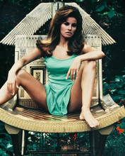 This is an image of 234410 Raquel Welch Photograph & Poster