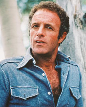 This is an image of 240792 James Caan Photograph & Poster