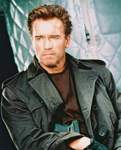 This is an image of 241860 Arnold Schwarzenegger Photograph & Poster