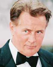 This is an image of 242284 Martin Sheen Photograph & Poster