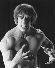 This is an image of 170419 Lou Ferrigno Photograph & Poster