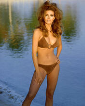This is an image of 243509 Raquel Welch Photograph & Poster