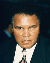 This is an image of 248473 Muhammad Ali Photograph & Poster