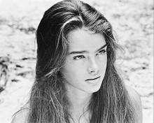 This is an image of 169257 Brooke Shields Photograph & Poster