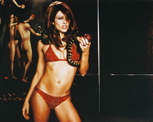 This is an image of 244819 Elizabeth Hurley Photograph & Poster