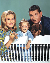 This is an image of 253704 Bewitched Photograph & Poster