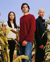 This is an image of 254667 Smallville Photograph & Poster