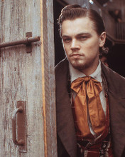 This is an image of 255244 Leonardo Dicaprio Photograph & Poster