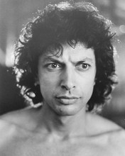 This is an image of 173721 Jeff Goldblum Photograph & Poster
