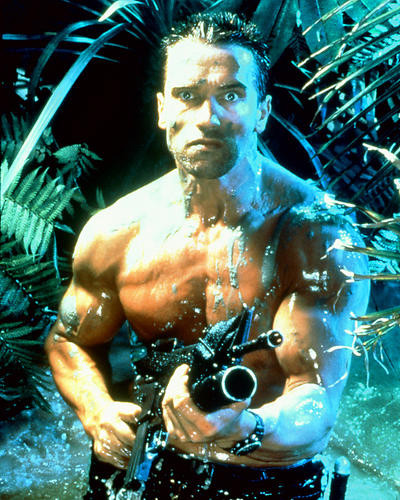 This is an image of 264127 Arnold Schwarzenegger Photograph & Poster