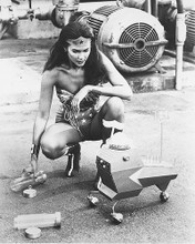 This is an image of 177445 Wonder Woman Photograph & Poster