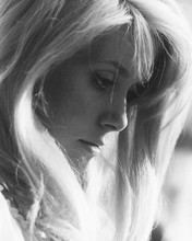 This is an image of 178214 Catherine Deneuve Photograph & Poster