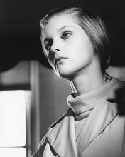 This is an image of 178285 Carol Lynley Photograph & Poster
