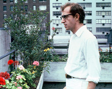 This is an image of 256919 Woody Allen Photograph & Poster